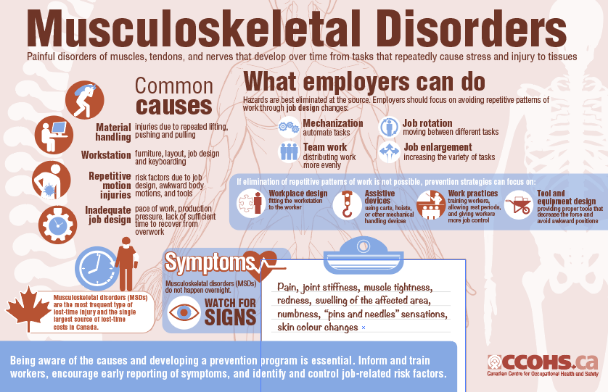 Preview an infographic outlining the causes and symptoms of musculoskeletal disorders, as well as actions that workplaces can take to reduce risks and keep employees safe