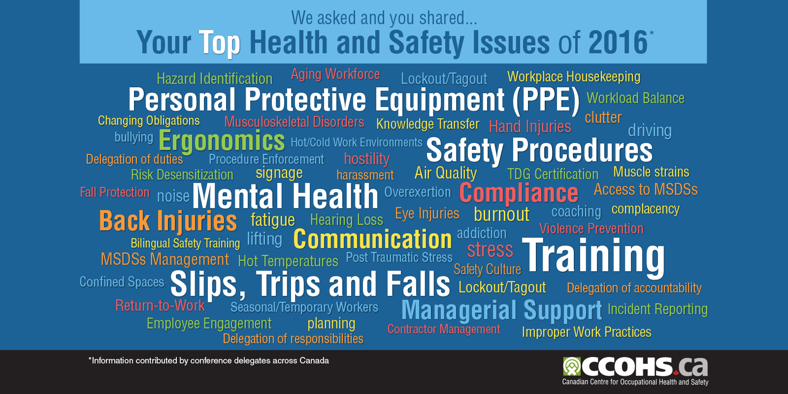 We asked and you shared. Your top Health and Safety Issues of 2016 (information contributed by conference delegates across Canada).