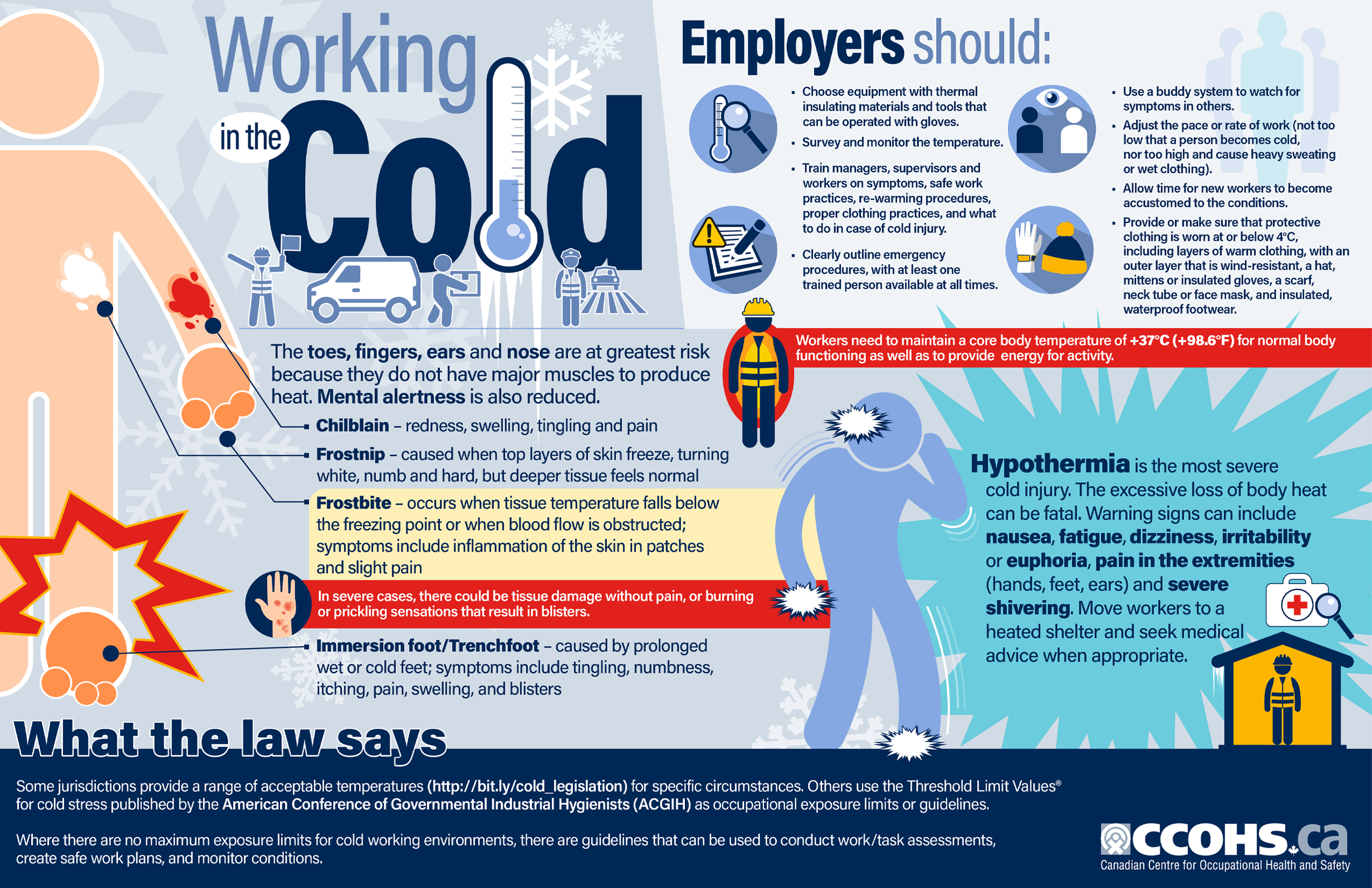 Working In The Cold Infographic