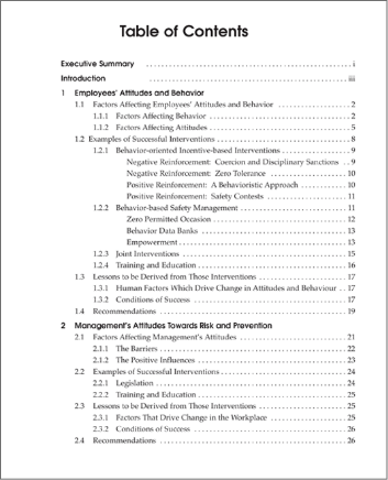 Snapshot of the publication's Table of Contents