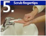 Scrub Fingertips