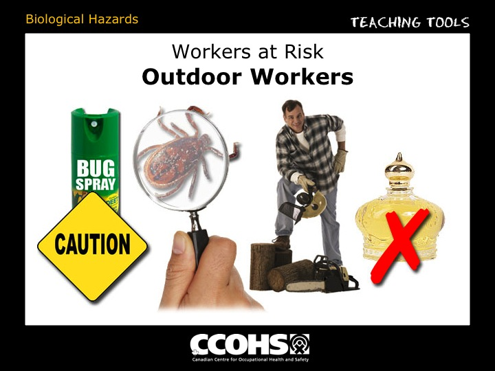 The Young Workers Zone Teaching Tools Biological Hazards