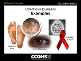 Infectious Diseases - Examples