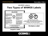 Two Types of WHMIS Labels