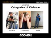 Categories of Violence